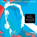 PAUL WELLER - WE GOT A LOT