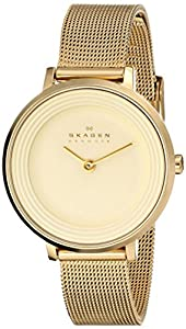 Skagen Women's SKW2212 Ditte Quartz 2 Hand Stainless Steel Gold Watch