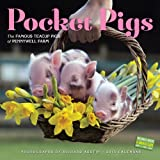 img - for Pocket Pigs 2015 Wall Calendar: The Famous Teacup Pigs of Pennywell Farm book / textbook / text book