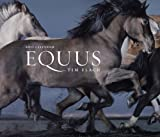 Equus 2011 Wall Calendar (0810989115) by Flach, Tim