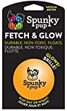 American Dog Toys Fetch & Glow Jr. Ball, Medium