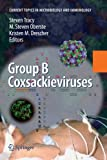 Group B Coxsackieviruses (Current Topics in Microbiology and Immunology)