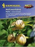 Solanum muricatum Melonenbirne Pepino