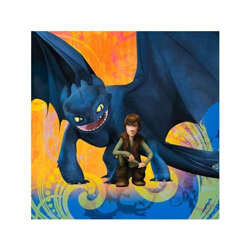How To Train Your Dragon Party Beverage Napkins