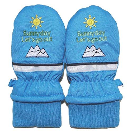 2014年 冬物 マウンテン 刺繍 スノー手袋 ミトン グローブ WARM GLOVES サックス 1-2才
