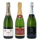 シニアソムリエ厳選 直輸入 スパークリングワイン3本セット((W0AFC4SE))(750mlx3本ワインセット)