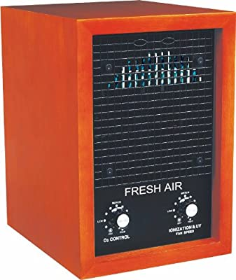 Ionic Air Purifier & Ozone Generator - Covers 4000 Sq. Ft.