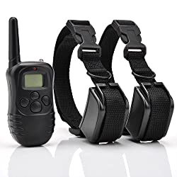 Excelvan Remote Control Dog Training Shock Collar for 2 Dogs with 100LV of Shock and Vibration, Rechargeable and Waterproof