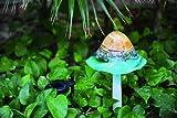 Coloriscape Solar Mushroom Yard Art, Aqua Amber