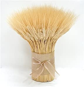 Blonde Wheat Bundle Centerpiece