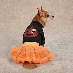 Zack & Zoey Pumpkin Costume Set for Pets, XX-Small, Orange