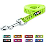 Pawtitas 6-ft Reflective Dog Leash Extra Small/Small Green 5/8 Inch