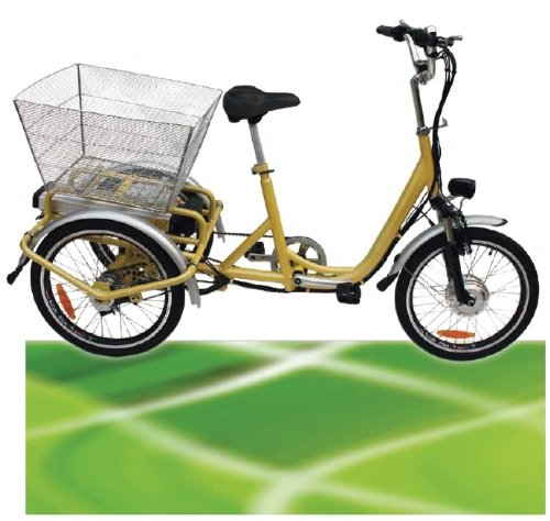www.ELEKTEROFAHRZEUGE.in 250W ElektroDreirad Elektro Dreirad Elektrofahrrad Li-ion Akku bis 25km/h