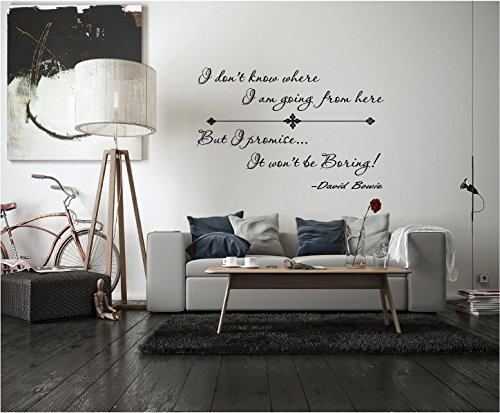 Quote It! - David Bowie I Don't Know Vinyl Wall Decals Quotes Inspirational (David Bowie Decal compare prices)