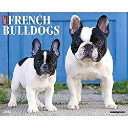French Bulldogs 2014 Wall Calendar made by Willow Creek Press
