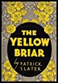 THE YELLOW BRIAR - A Story of the Irish on the Canadian Countryside