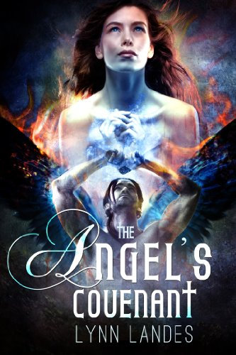 The Angel's Covenant by Lynn Landes ebook deal