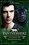 Image de Pantherherz, Episode 3 - Fantasy-Serie (Academy of Shapeshifters)