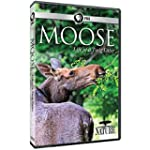 NATURE: Moose:  Life of a Twig Eater