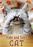 Peek-A-Boo Cat and Kitty ( A Picture Book for Kids ) An easy reader series