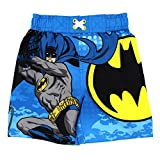 DC Comics Boys 2T-4T Batman Swim Trunk