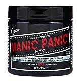 スペシャルセットMANIC PANICマニックパニック:Raven (レイヴァン)+ヘアカラーケア4点セット