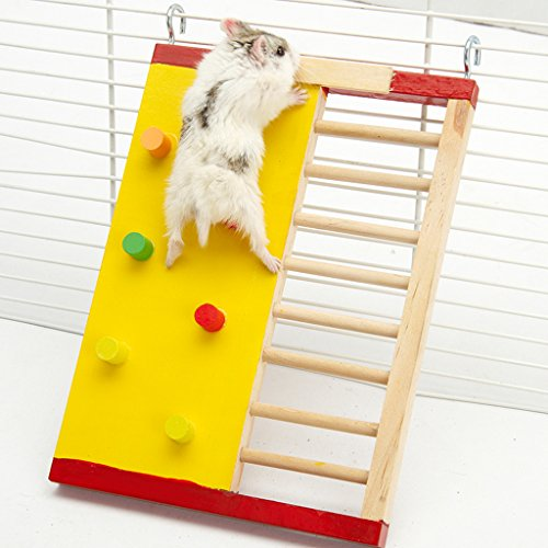 Colorful Funny Climbing Ladder Molar Supplies for Hamsters 51skIWZp4DL