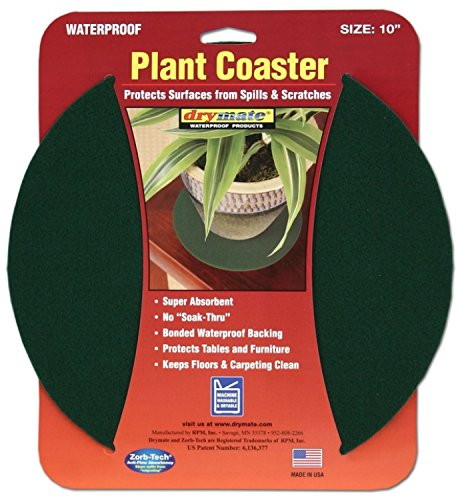 plant-coasters-10-20cm-3-pack-green
