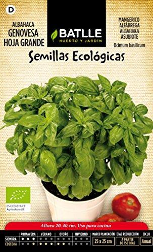 semillas-batlle-667301bols-albahaca-genovese-hoja-grande-eco