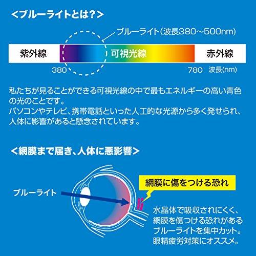 サンワサプライ iPad Air 2用ブルーライトカット液晶保護指紋反射防止フィルム LCD-IPAD6BCAR