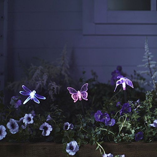 3er set solar stableuchten gartendeko libelle kolibri. Black Bedroom Furniture Sets. Home Design Ideas