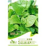 CHINA PACK SEED30+ graine nutrition épinard de malabar (basella alba) graine c028