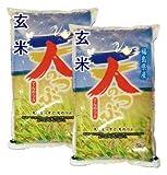 福島県産 玄米 石抜き処理済 天のつぶ 10kg(5kg×2袋) 平成28年産
