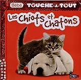 echange, troc Léa Thomattéo - Les chiots et châtons