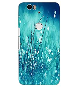 PrintDhaba Flowers D-2280 Back Case Cover for HUAWEI NEXUS 6P (Multi-Coloured)