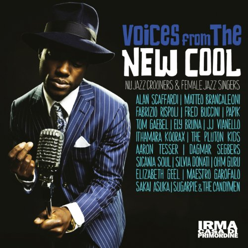 Voices from the New Cool (Nu Jazz Crooners and Female Jazz Singers) (Jazz Female Singers compare prices)