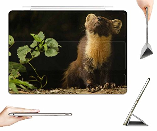 irocket-ipad-air-case-transparent-back-cover-small-animals-frette-animal-auto-wake-sleep-function