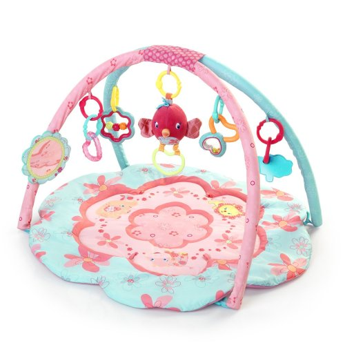 Bright Starts Petals and Friends Activity Gym