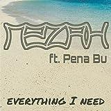 Everything I Need (feat. Pena Bu)