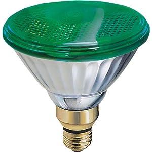 Buy Ge 13474 85 Watt Outdoor Par38 Incandescent Light Bulb Green With Best Price Outdoor Flood