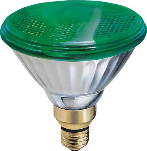 GE 13474 85-Watt Outdoor PAR38 Incandescent Light Bulb, Green