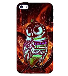 PrintDhaba COLOURFUL OWL D-6174 Back Case Cover for APPLE IPHONE 5 (Multi-Coloured)