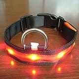Zehui 2,5cm Breit von 35 bis 43cm Hundehalsband LED Halsband Leuchthalsband Mit 3 verschiedene Leucht-Modi Wasserdicht Sicherheithalsband Größe S,Rot Für Hunde, Katze, Haustier