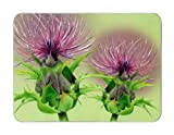 Castle Melamine Stirling Thistle placemats