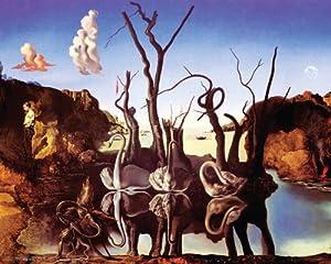 Salvador Dali Swans Reflecting Elephants (Reflection of Elephants) Surrealist Art Poster Print 16x20