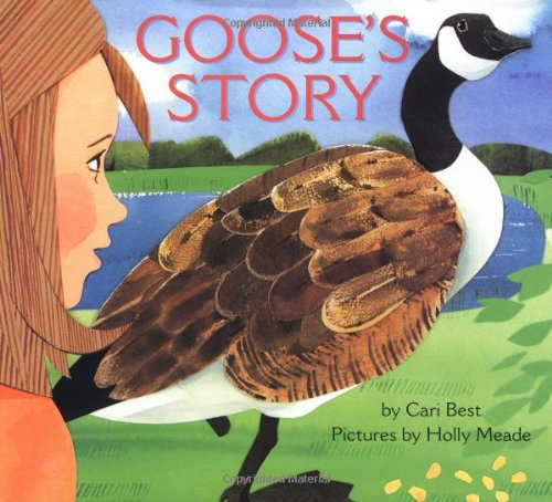 Goose\'s Story