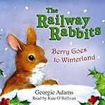 Berry Goes to Winterland | Georgie Adams