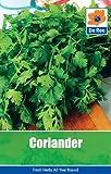 Coriander (Garden Treasures)