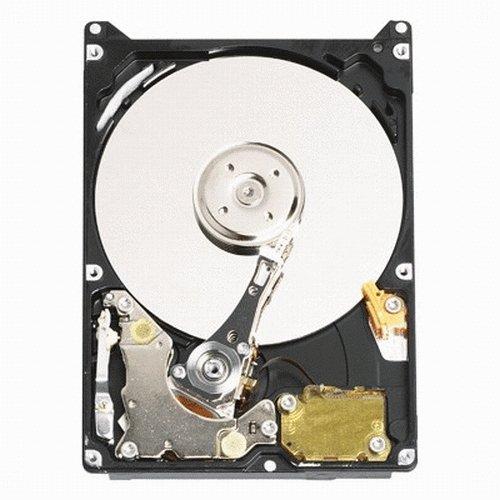 Western Digital 320 GB Scorpio Blue 100 Mb/s 5400 RPM 8 MB Cache Bulk/OEM Notebook Hard Drive - WD3200BEVE