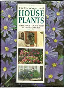 the encyclopedia of house plants essay Here you'll discover profiles and care tips, plus pictures for identifying house  plants (finally, you can get a positive id on that exotic plant-in-a-basket you.